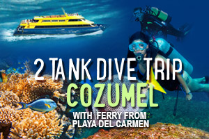 2_Tank_Dive_Trip_Cozumel_with_Ferry_from_Playa_del_Carmen