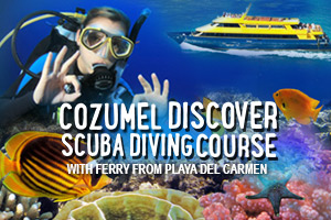 Cozumel_Discover_Scuba_Diving_Course_with_Ferry_from_Playa_del_Carmen