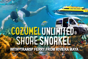 Cozumel_Unlimited_Shore_Snorkel_with_Transp_Ferry_from_Riviera_Maya