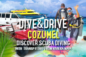 Dive_And_Drive_Cozumel_Discover_Scuba_Diving_With_Transp_Ferry_From_Riviera_Maya