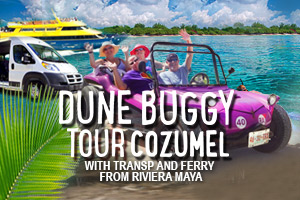 Dune_Buggy_Tour_Cozumel_with_Transp_and_Ferry_From_Riviera_Maya-2