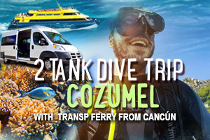 2_Tank_Dive_Trip_Cozumel_with_Transp_Ferry_from_Cancun