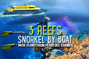 3_Reefs_Snorkel_By_Boat_with_Ferry_from_Playa_del_Carmen