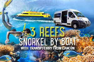 3_Reefs_Snorkel_By_Boat_with_Transp_Ferry_from_Cancun