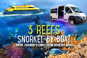 3_Reefs_Snorkel_By_Boat_with_Transp_Ferry_from_Riviera_Maya