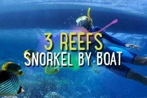 3_reefs_snorkel_by_boat