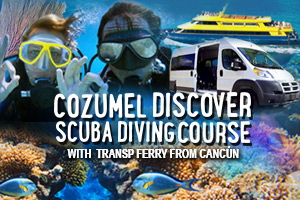 Cozumel_Discover_Scuba_Diving_Course_with_Transp_Ferry_from_Cancun-2