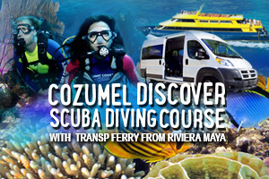 Cozumel_Discover_Scuba_Diving_Course_with_Transp_Ferry_from_Riviera_Maya