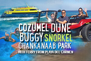 Cozumel_Dune_Buggy_Snorkel_Chankanaab_Park_with_Ferry_from_Playa_del_Carmen