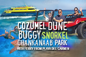 Cozumel Dune Buggy Chankanaab Park with Ferry from Playa del Carmen – Tour Picture