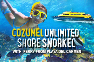 Cozumel Unlimited Shore Snorkel with Ferry From Playa del Carmen – Tour Picture