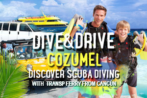Dive and Drive Cozumel Discover with Transp From Cancun – Tour Picture