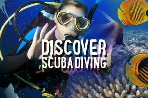 Cozumel Discover Scuba Diving Course with Lunch Included – Tour Picture