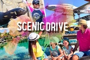 scenic_drive_cozumel_photo